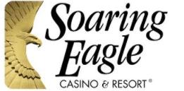 soaring-eagle-Yabm8fBQaoVTXxeF.png